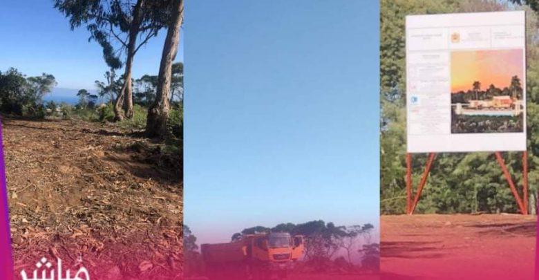 مشروع بناء فيلات فخمة يخترق غابة الرميلات بطنجة 1