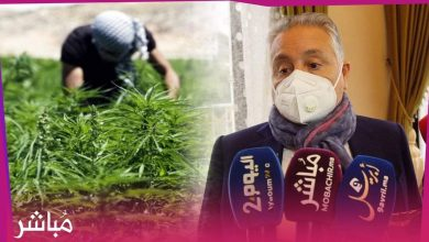 """نبيل بنعبد الله: الدولة قامت بخطوة جريئة لتقنين نبتة """"الكيف"""" 1"""