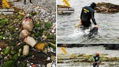 """سبتة..توقيف شابين مغربيين حاولا تهريب 70 كلغ من """"الحشيش"""" سباحة 4"""