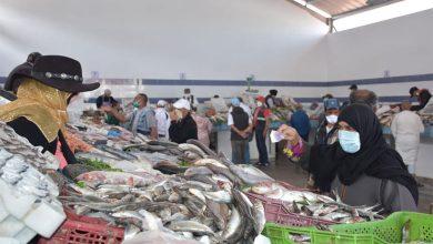 السماسرة يحرمون المغاربة من السمك خلال شهر رمضان 3