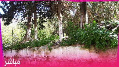 قطعة أرضية خالية وسور آيل للسقوط يهدد حياة المارة بحي الشرف بطنجة 1