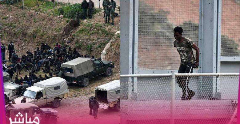 القوات المساعدة تحبط محاولة اقتحام سياج سبتة المحتلة 1