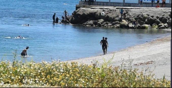 استنفار كبير في سبتة المحتلة بعد تدفق 2700 مهاجر بحرا 1