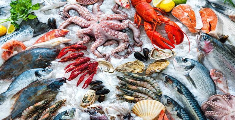 ارتفاع قيمة منتجات الصيد البحري بنسبة 28 في المائة 1