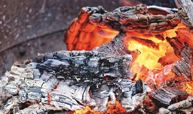 """وزارة الصحة تحذر المواطنين من التسمم ب""""الفحم"""" خلال عيد الأضحى 1"""