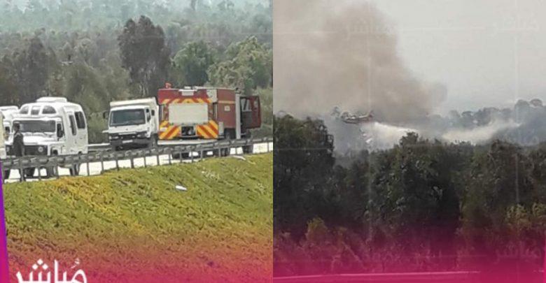 حريق مهول بإحدى غابات العرائش وفرق الإطفاء تحاصره 1