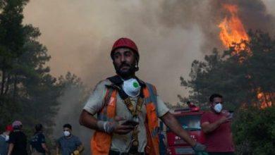 دخان حرائق الغابات يزيد من إصابات ووفيات كورونا 5