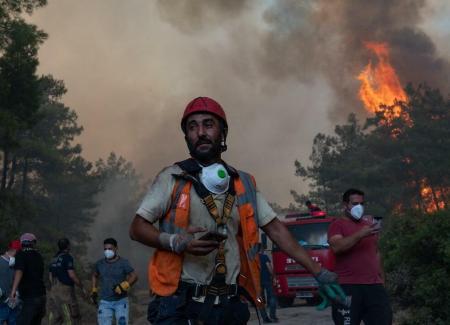 دخان حرائق الغابات يزيد من إصابات ووفيات كورونا 1