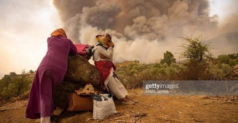 حصيلة رسمية..حريق شفشاون يأتي على 1100 هكتار من الغطاء الغابوي 1