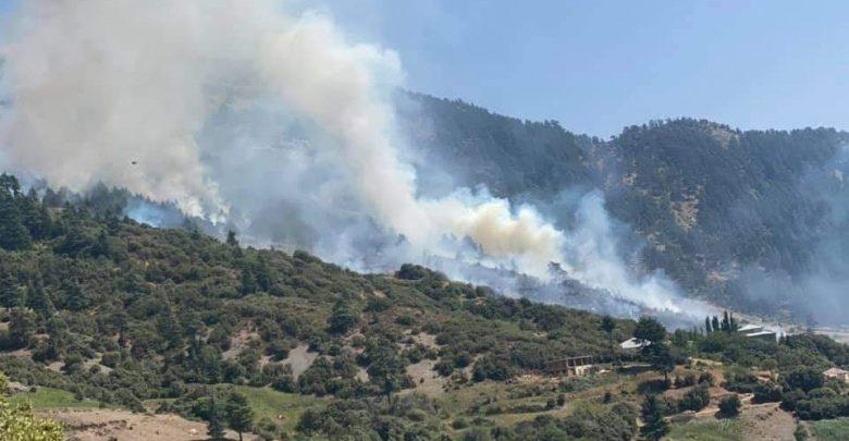 """النيران تلتهم غابات """"اساكن"""" بإقليم الحسيمة 1"""