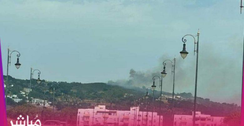 """حريق بغابة """"مديونة"""" يستنفر سلطات طنجة 1"""