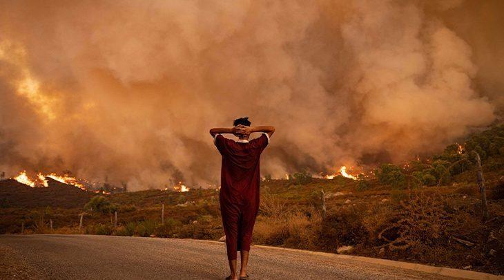 غابات.. انخفاض المساحة المتضررة من الحرائق بـ47 في المائة 1