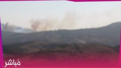النيران تأتي على غابة دار الشاوي نواحي طنجة 4