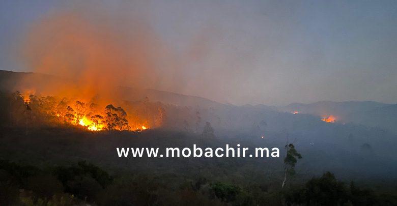 """ضعف الإمكانيات يحول دون السيطرة على حريق غابة """"دار الشاوي"""" 1"""