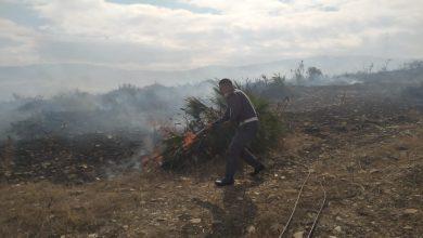 """درك """"ملوسة"""" يوقف ثلاثيني أضرم النار في أزيد من 7 هكتارات من الأراضي الفلاحية 3"""