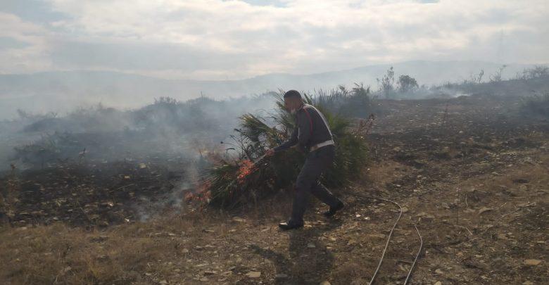 """درك """"ملوسة"""" يوقف ثلاثيني أضرم النار في أزيد من 7 هكتارات من الأراضي الفلاحية 1"""
